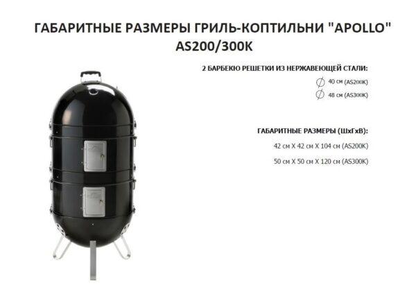 Гриль коптилка угольная Napoleon Apollo-200